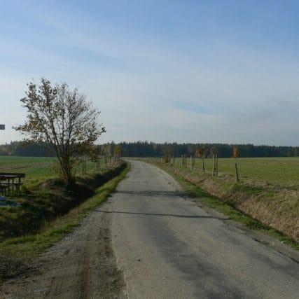 Výsadba liniové zeleně a ekostabilizačních prvků pro obec Jílovice
