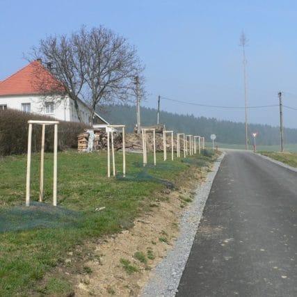 Výsadby pro Pozemkový úřad Český Krumlov