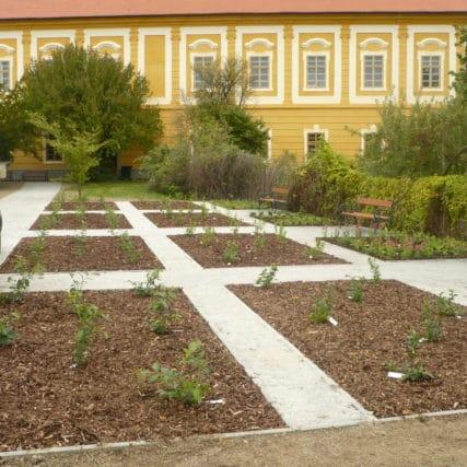 Borovany – borůvková zahrada