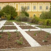 Článek o naší zakázce – Borůvková zahrada v Borovanech