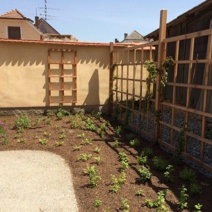 Bylinková zahrada Borovany