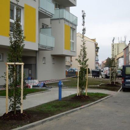 BD Jírovcova – Č.Budějovice
