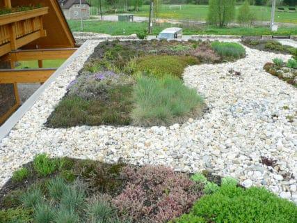 Střešní zahrady a zelené střechy